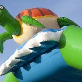 Schildpad springkussen