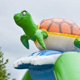 Multifun Schildpad